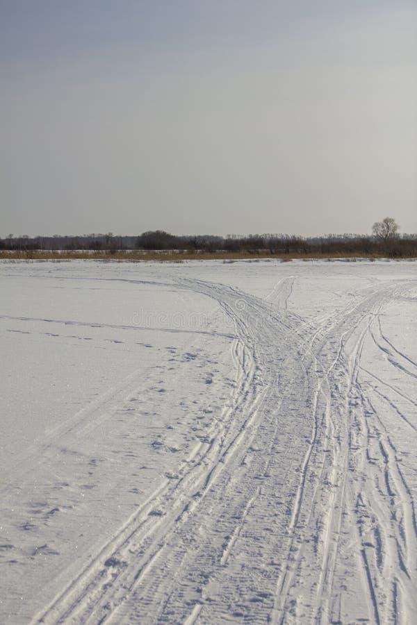 Sporen van een sneeuwscooter in de witte woestijn tegen de achtergrond van een droog de winterbos onder de blauwe hemel stock afbeelding