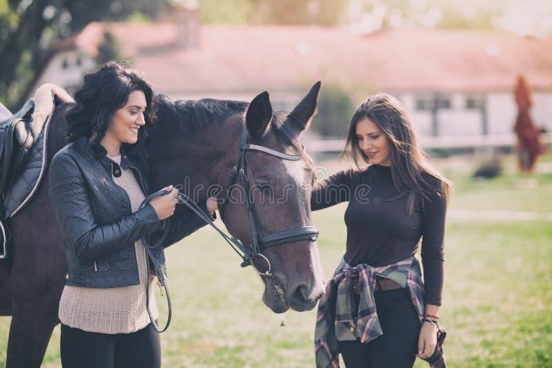 Spornt die hübsche Frau zwei, die Pferdefirma genießt, Hobby und Liebe von Pferden an stockfotografie