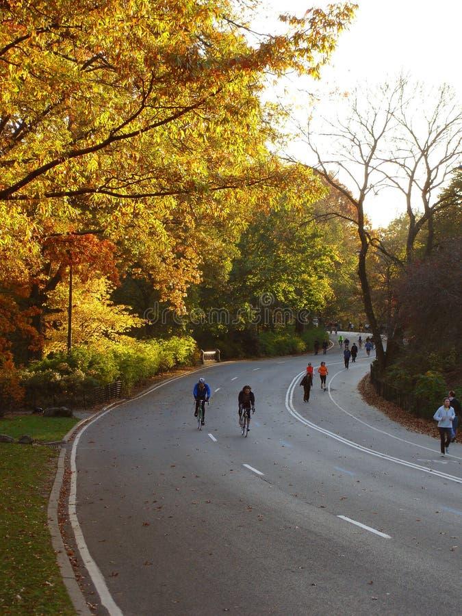 Sport activity in Central Park, New York, NY. Fall evening stock photos