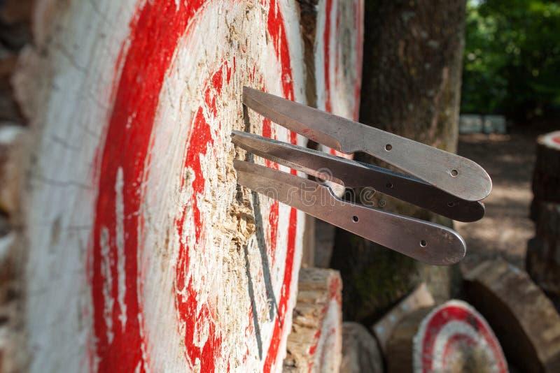 Sport all'aperto che gettano i coltelli Italia immagini stock libere da diritti
