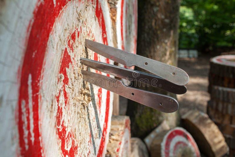 Sport all'aperto che gettano i coltelli Italia fotografia stock