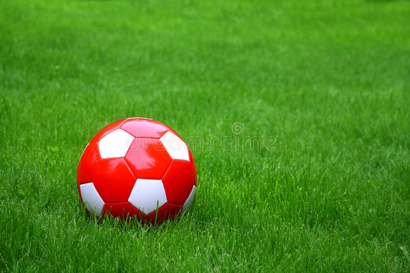 Sport ball over the grass. Soccer football ball over the green grass royalty free stock photos