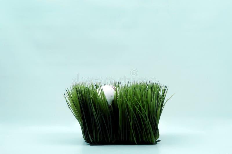 Sport - Baseball im Gras stockfoto