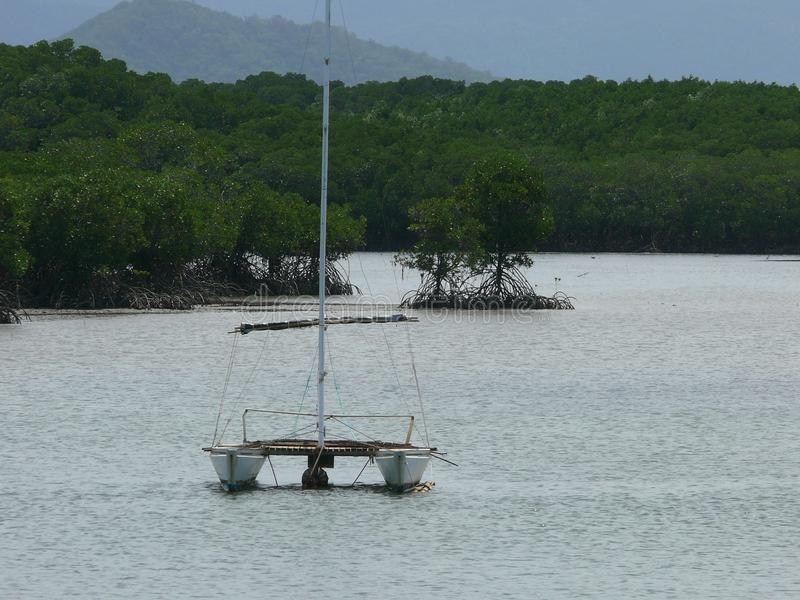 Sport catamaran, anchoring off the coast with jungle. And mangrove stock image