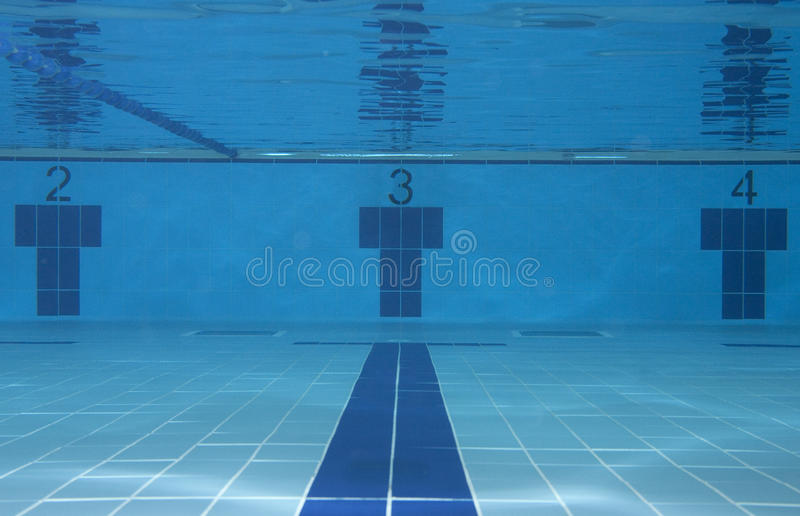 Download Sport concept stock photo. Image of recreation, clear - 19025374