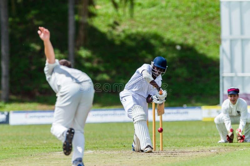 Sport d'action de cricket images libres de droits