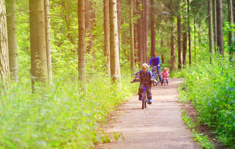 Sport della famiglia - padre e bambini che guidano le bici nella foresta di estate immagine stock