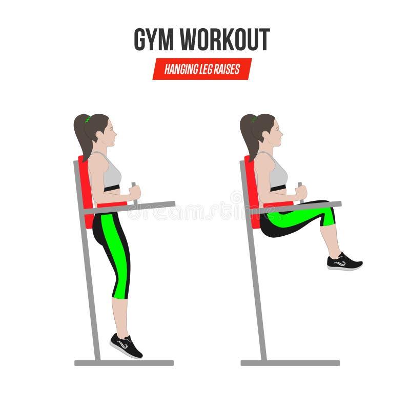 Sport exercises. Gym workout. hanging leg raises. Captain`s chair leg raise. Illustration of an active lifestyle Vector vector illustration
