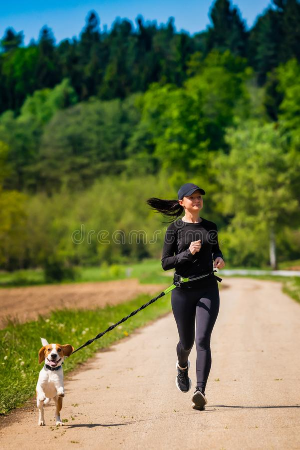 Sport girl is running with a dog Beagle on the rural road towadrds camera royalty free stock image