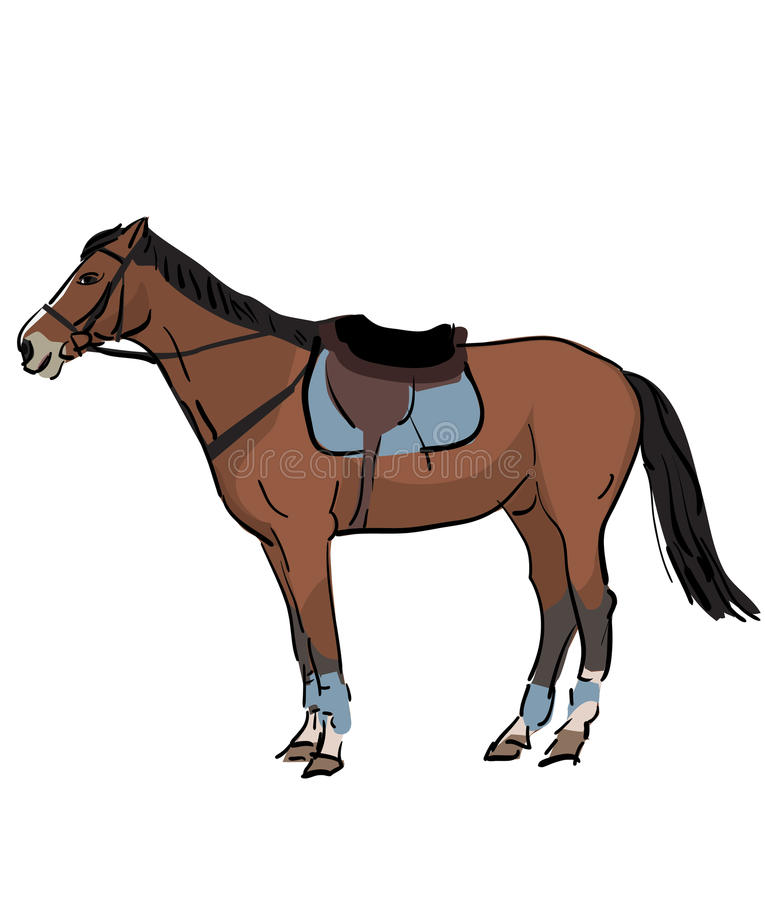 Download Sport horse with saddle stock vector. Image of equestrian - 30678997