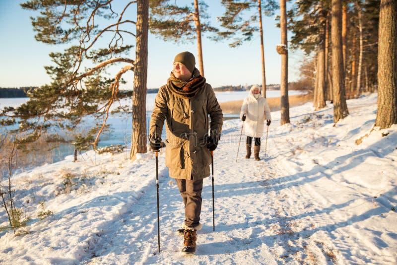 Sport invernali in Finlandia - camminata nordica fotografie stock libere da diritti