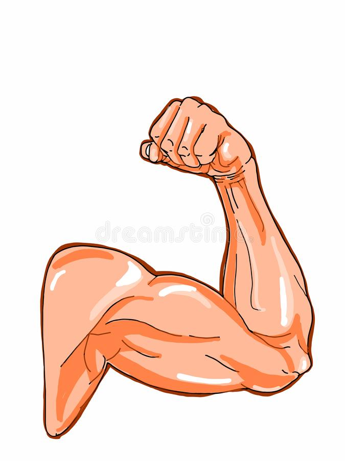 Sport man muscular strong arm illustration illustration. Sport man muscular strong arm illustration white background vector illustration