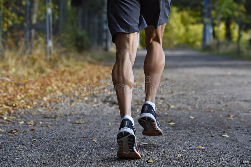 Sport man with ripped athletic and muscular legs running off road in jogging training workout at countryside in Autumn background royalty free stock photography