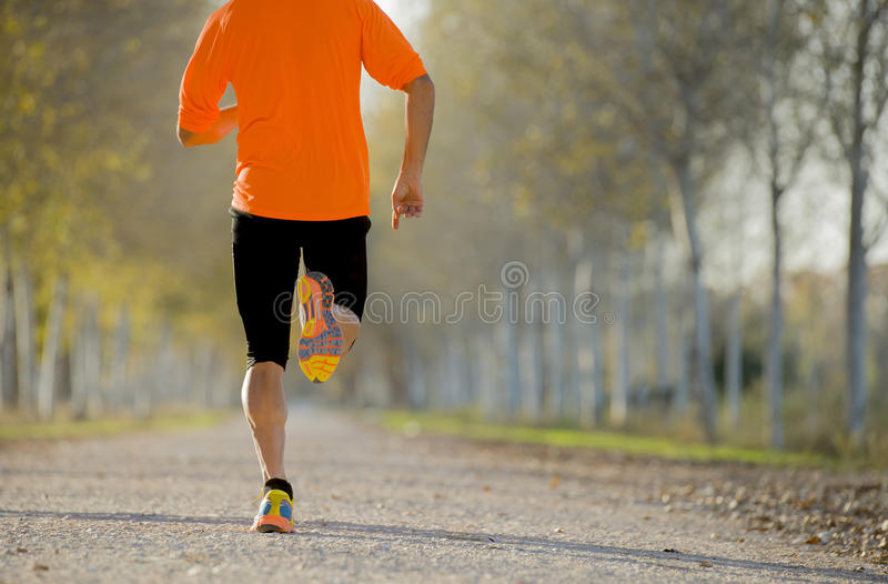 Sport man with strong calves muscle running outdoors in off road trail ground with trees under beautiful Autumn sunlight. Back view of young sport man with stock image