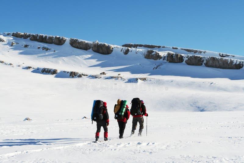 sport na śnieg na zimę obraz royalty free