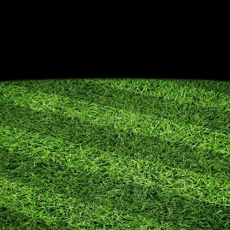 Sport trawy prążkowany pole fotografia royalty free