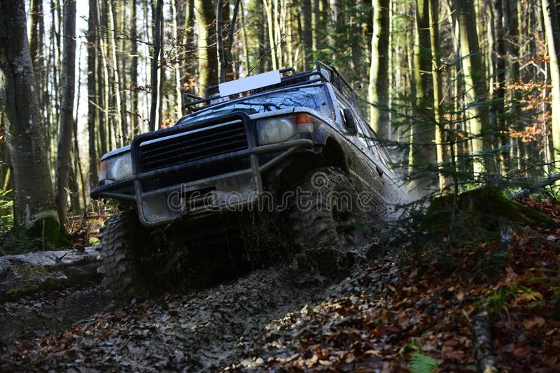 Sport utility vehicle or SUV overcomes obstacles. Offroad race on fall nature background. Motor racing in autumn forest. Rallying, competition and four wheel royalty free stock photography