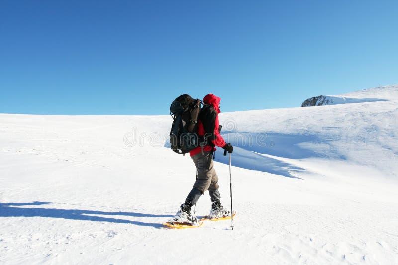 sport zimowy fotografia royalty free