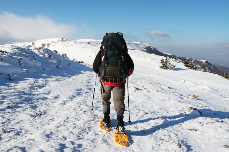 sport zimowy obraz royalty free