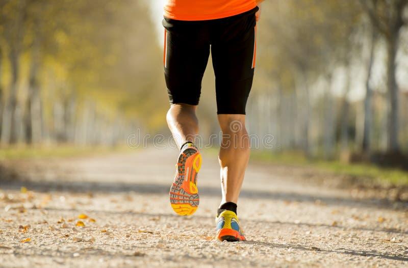 Sporta mężczyzna biega outdoors w drogowym śladzie z z silnym łydka mięśniem gruntuje z drzewami pod pięknym jesieni światłem sło obrazy royalty free
