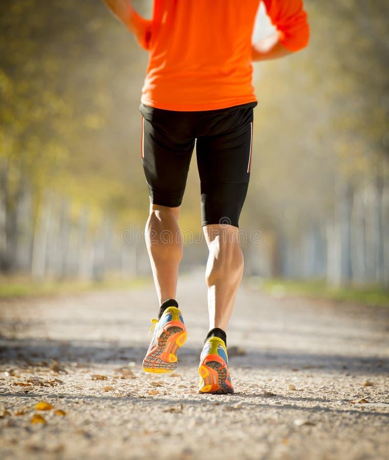 Sporta mężczyzna biega outdoors w drogowym śladzie z z silnym łydka mięśniem gruntuje z drzewami pod pięknym jesieni światłem sło zdjęcie stock