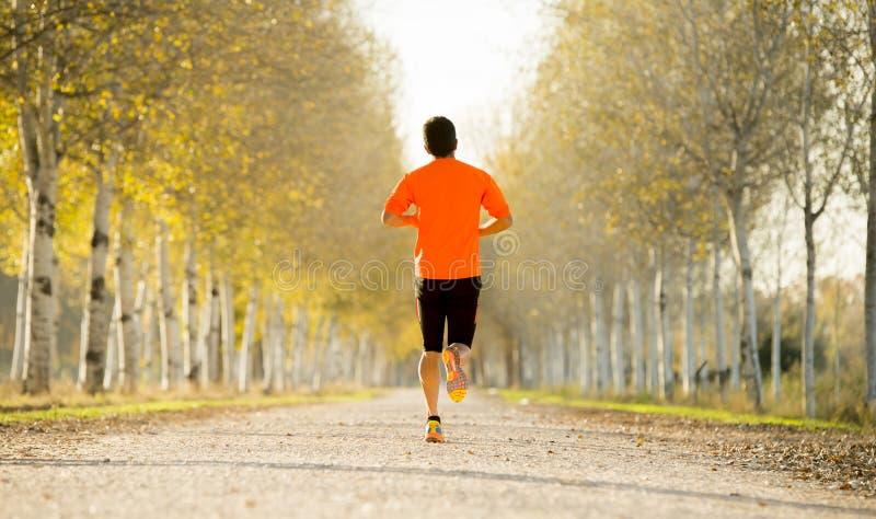 Sporta mężczyzna biega outdoors w drogowym śladzie z z silnym łydka mięśniem gruntuje z drzewami pod pięknym jesieni światłem sło fotografia royalty free