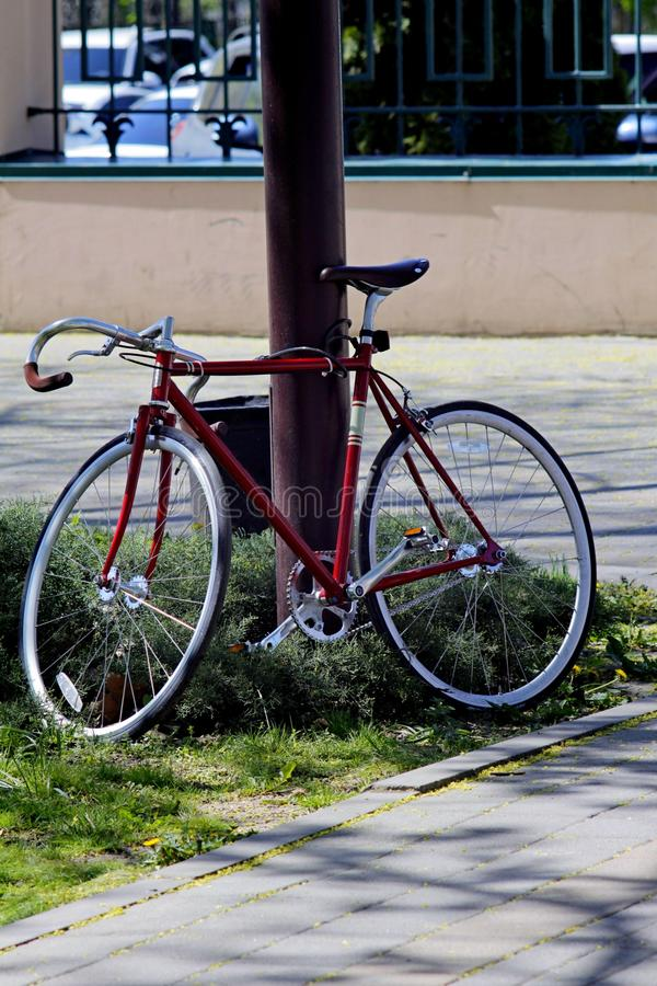 Sportar cyklar bundet till en pol i parkera royaltyfri foto