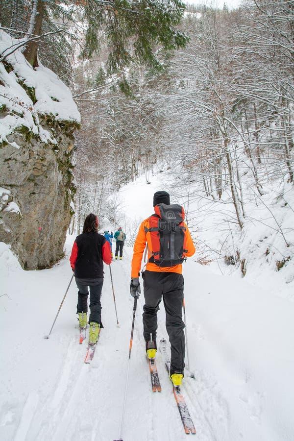 Sportar för skidåkning för Transylvania vintertid med familjen i bergen i Rumänien arkivfoto