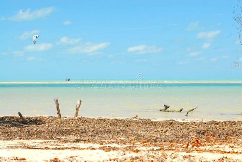 Sportar för vatten för Holbox ö karibiska arkivfoto