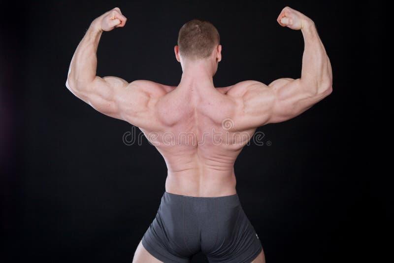 Sporten idrottsman nenkroppsbyggaren visar av hans muskler royaltyfri bild