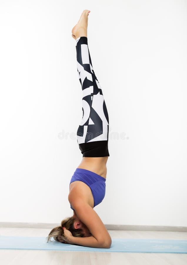 Sportig för övningsyoga för ung kvinna asana i grupp Begreppet av lugn och kopplar av royaltyfria bilder