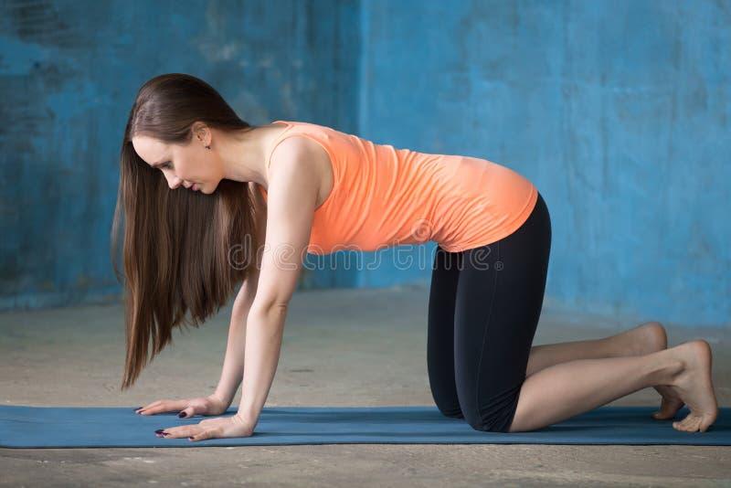 Sportig härlig ung kvinna som gör bharmanasana royaltyfri foto