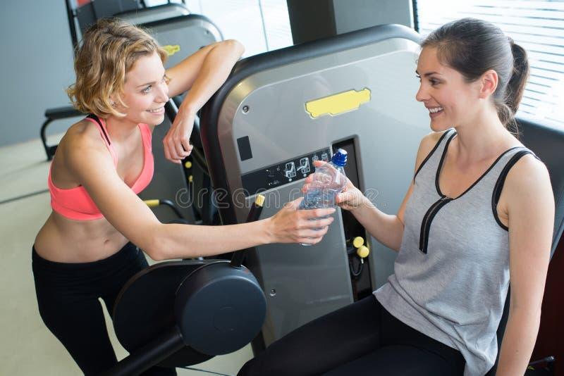 Sportigt kvinnadricksvatten i idrottshallinnehavflaskan som har avbrottet arkivfoton