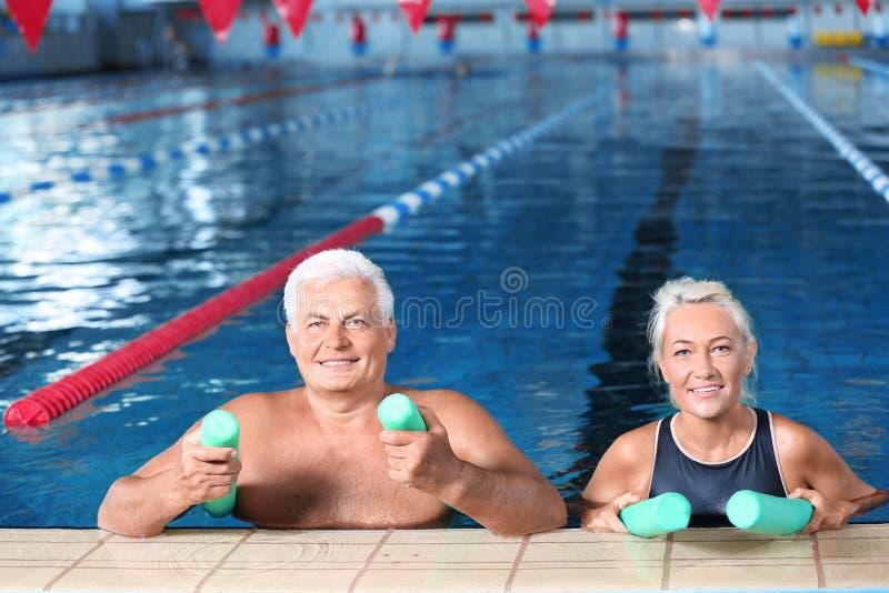 Sportive höga par med simningnudlar royaltyfri fotografi