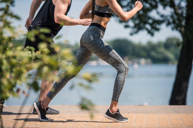 Sportive par som in joggar, parkerar royaltyfri fotografi