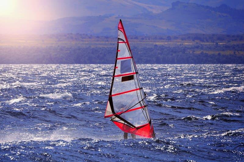 Sportman windsurfer op de meeroppervlakte stock afbeeldingen