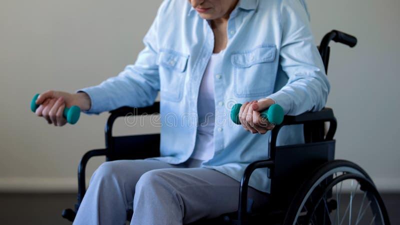 Sportowa babcia w wózków inwalidzkich podnośnych dumbbells w domu, utrzymujący napad, sport obraz royalty free