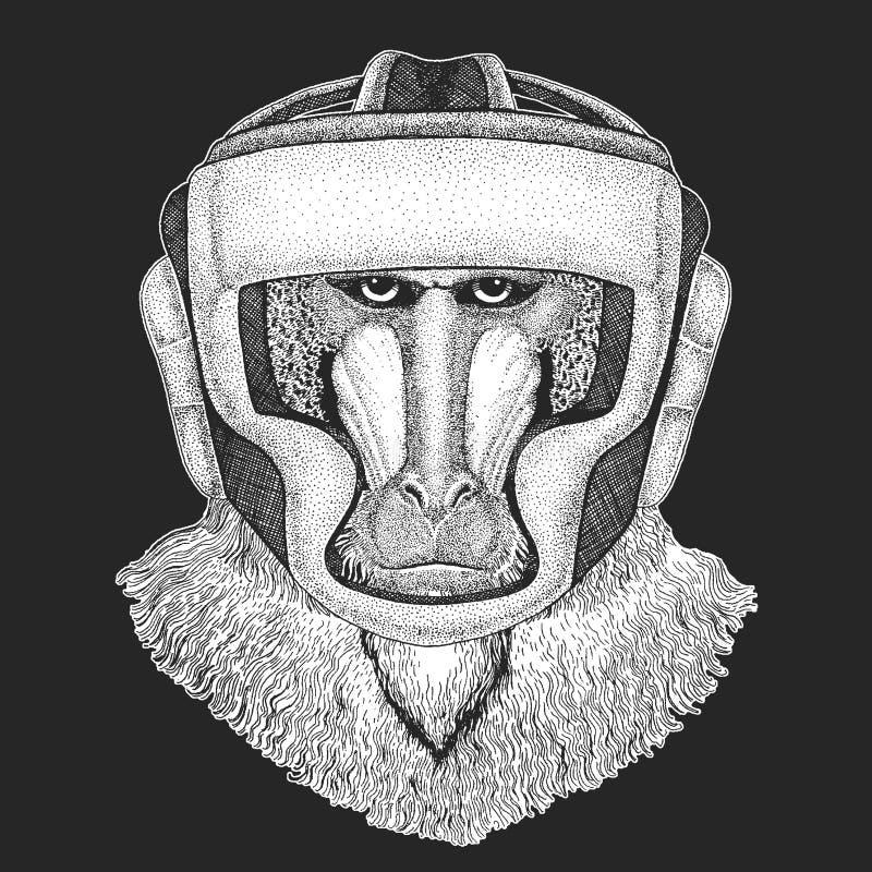 Sportowy zwierzęcy boksu mistrz Małpa, pawian, małpa, małpa druk dla koszulki, emblemat, logo wojenne sztuki wektor royalty ilustracja