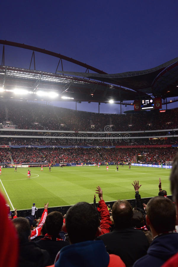 Sports Crowd, Champions League Football Game, Soccer Stadium royalty free stock image