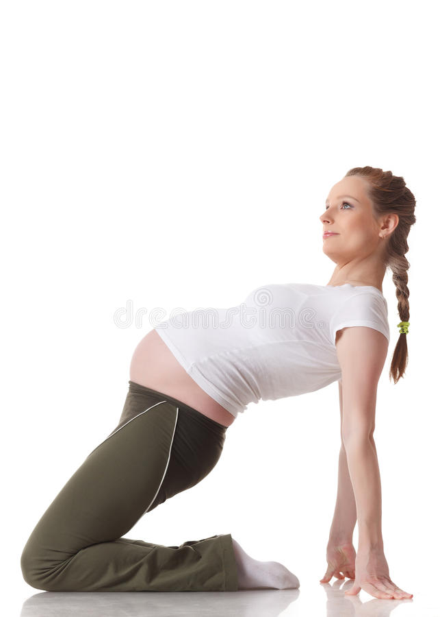 Download Sports Pregnant Young Woman. Fitness. Stock Image - Image: 28883653