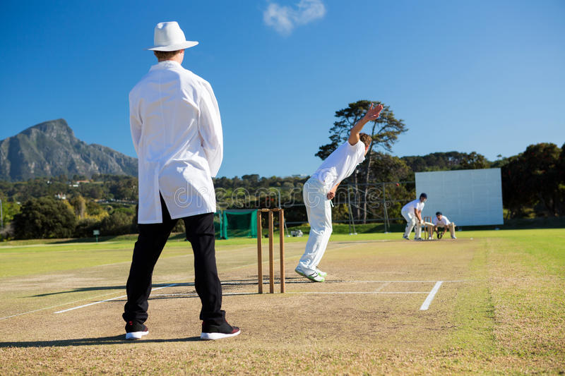 Sports team playing cricket on pitch stock images
