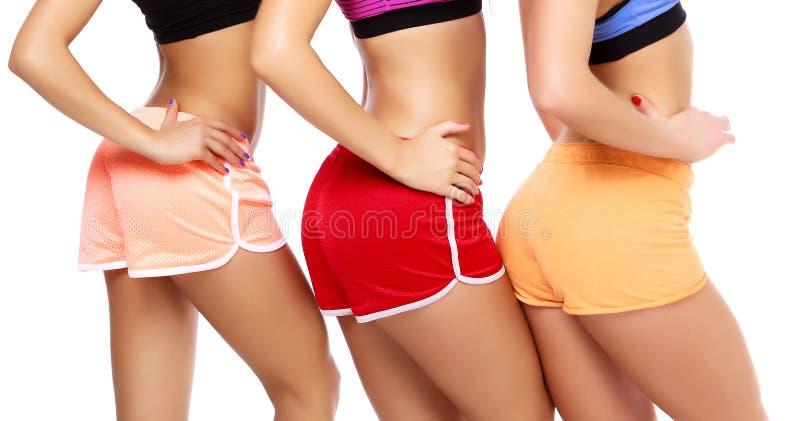Sports women bodies. White background stock photos