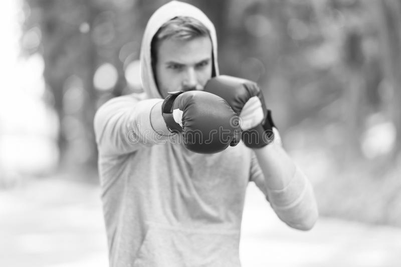 Sportsman concentrated training boxing gloves. Athlete concentrated face sport gloves practice fighting skills nature. Background. Attack or defend always be royalty free stock images