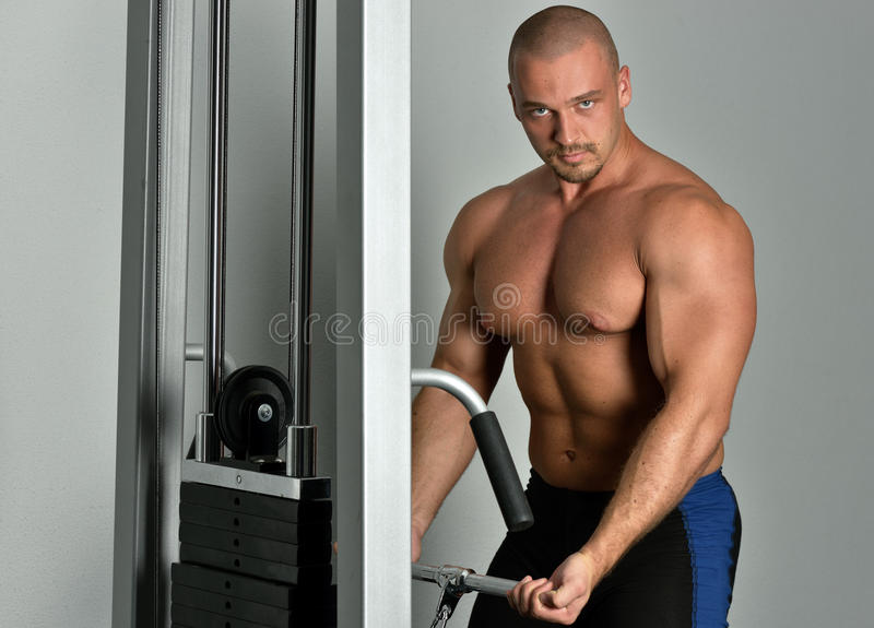 Download Sportsman Torso Doing Exercises In A Sport Club Stock Image - Image: 26404223