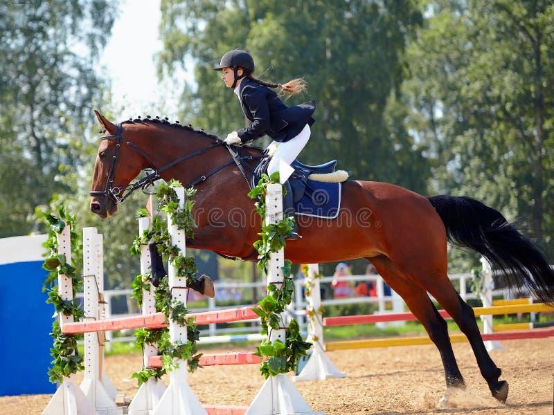 Sportsmenka na czerwonym koniu. zdjęcie royalty free