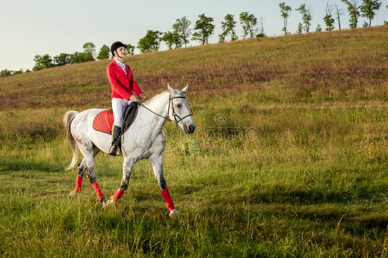 The horsewoman on a red horse. Horse riding. Horse racing. Rider on a horse. royalty free stock photography