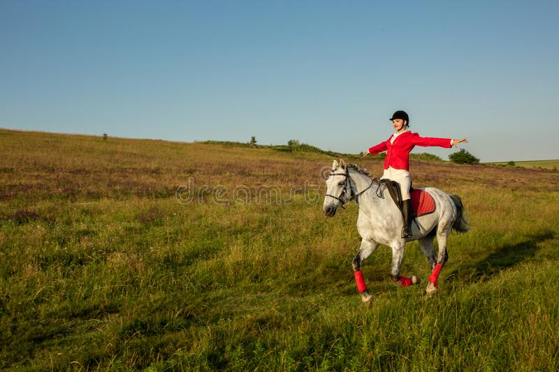 The horsewoman on a red horse. Horse riding. Horse racing. Rider on a horse. stock photos