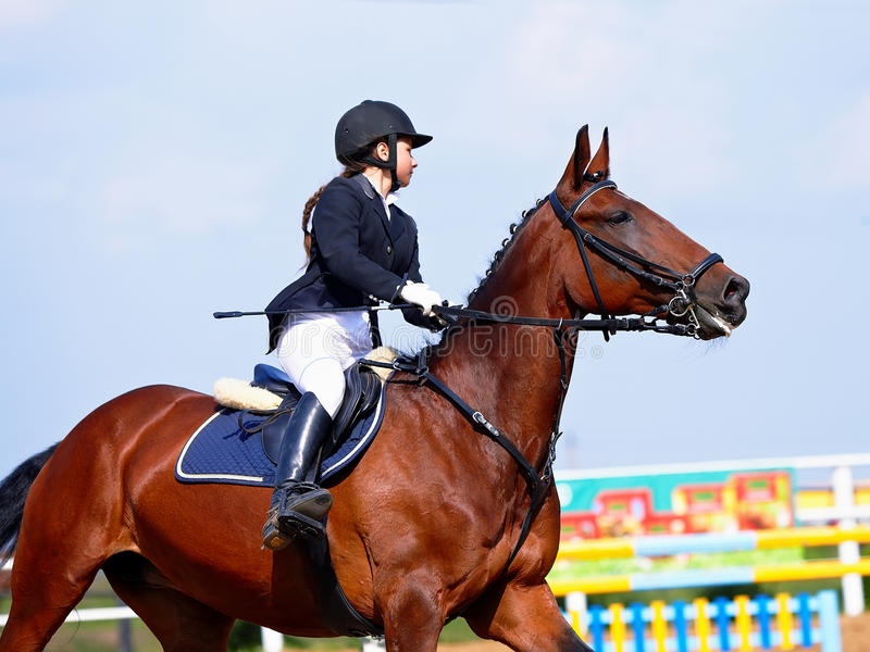 The sportswoman on a red horse at competitions. stock image