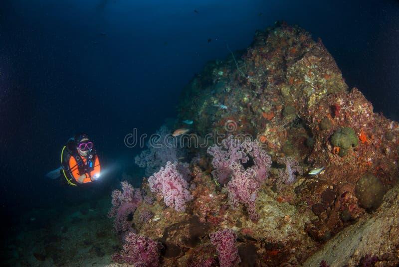 Sporttauchen der jungen Frau auf einem schönen weichen Korallenriff im Süden lizenzfreie stockfotografie
