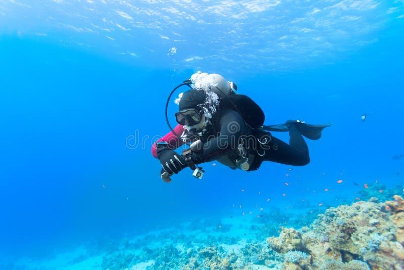 Sporttaucher, der über Korallenriff schwimmt lizenzfreies stockfoto
